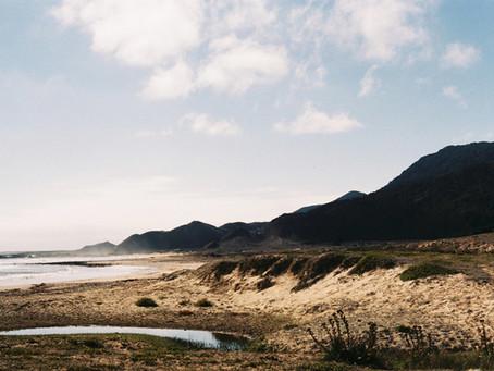 Regenerando el suelo de Isla Mocha