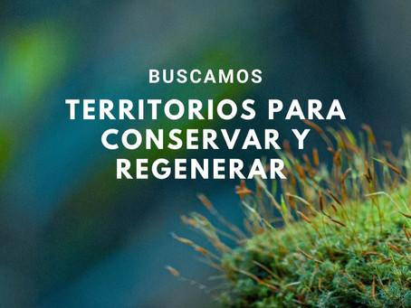 REGENERANDO CHILE – BUSCAMOS TERRITORIOS PARA REGENERAR Y CONSERVAR