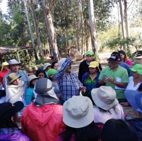 Proyecto: Curso de Agroecología para pequeños agricultores INDAP