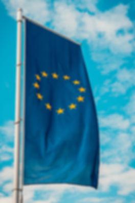 EU diplomacy.jpg