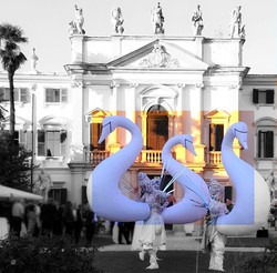 Curious Bubbles - Swan wedding