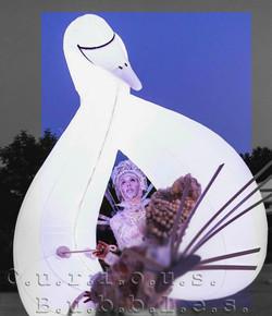 Curious Bubbles -Swans dance ok