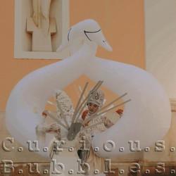 Curious Bubbles - Swan Gods