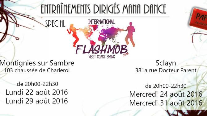 WCS Flashmob 2016 : Charleroi à l'affiche !