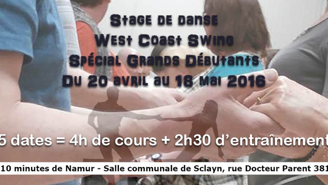 Stage de West Coast Swing Grands Débutants (Andenne)