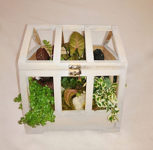 Wooden greenhous-wholesale-terrarium.jpg