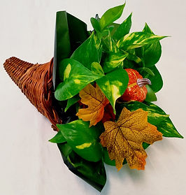 fall-dishgardens-wholesale.jpg