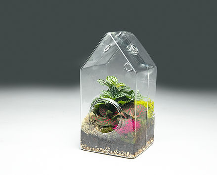 terrarium-house-wholesale.jpg