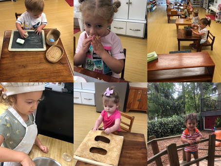 Toddler Program -
