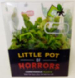 6 inch bog garden in monster box      (2
