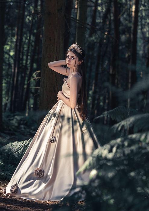 Bridal Gown AC