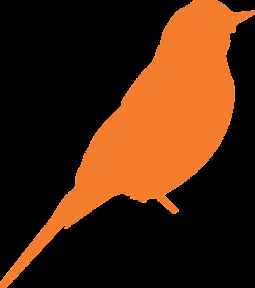 birdlogo-01.png