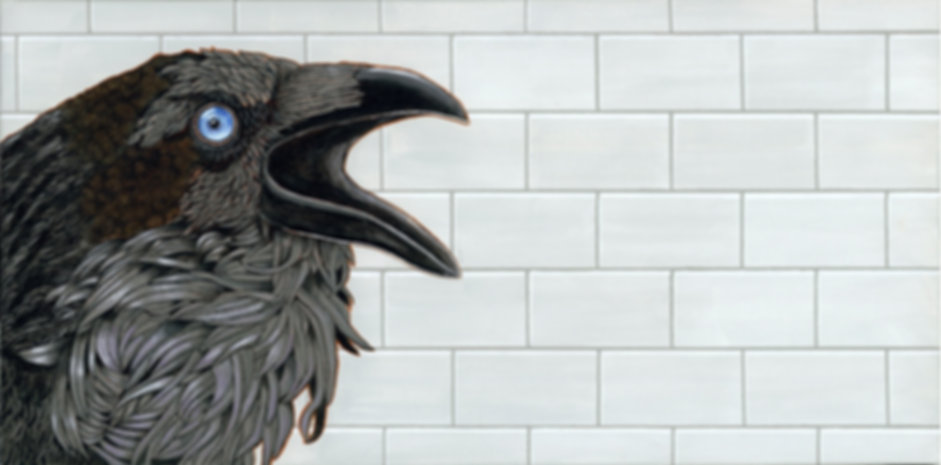 crow against the brick wall adj2_small.j