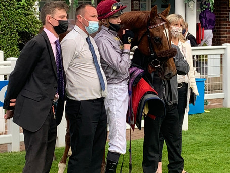 Tally-Ho-bred Ebro River becomes first stakes winner for Galileo Gold