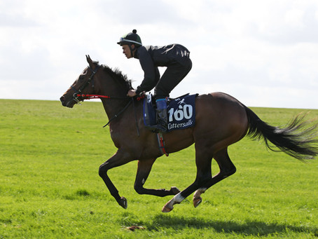 Tally-Ho breezer Spanish Mission lands Yorkshire Cup!