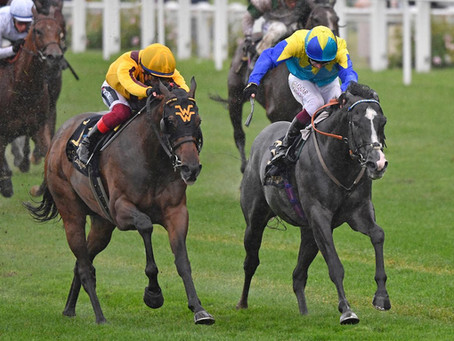 Commonwealth glory for Kodiac's daughter Campanelle