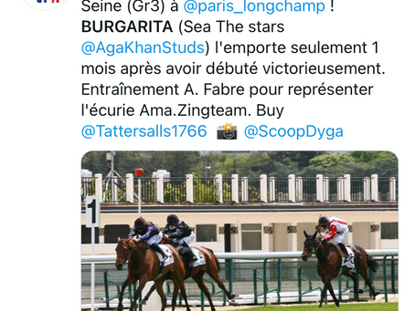 Burgarita continues Tally-Ho's excellent breeze-up spell