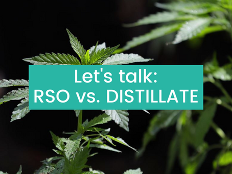 Let's Talk RSO & Distillate