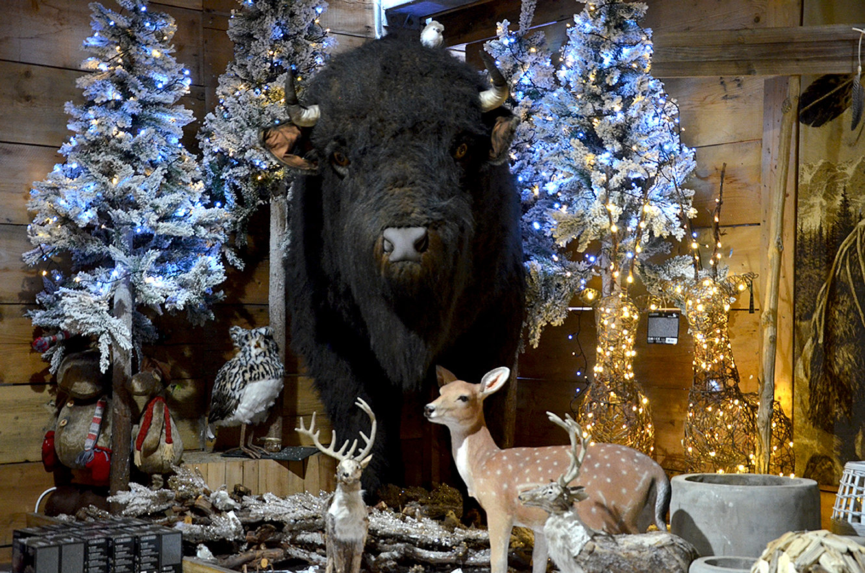 Decoration Er Noel