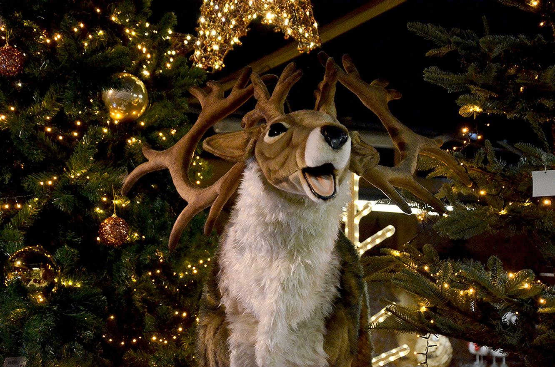 Decoration Bientot Noel