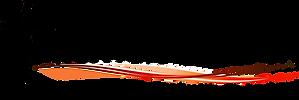 logo Flit cross png.png