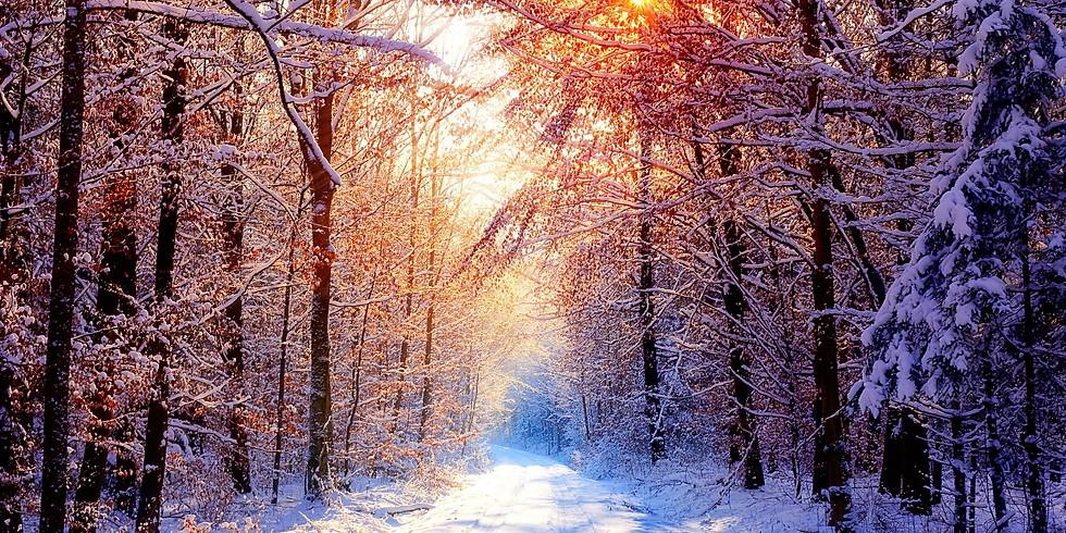 Advent Quiet Day: Prepare the Way