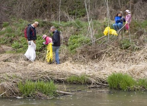 Pullman Stream Clean-Up