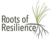 Roots of Resilience.jpg
