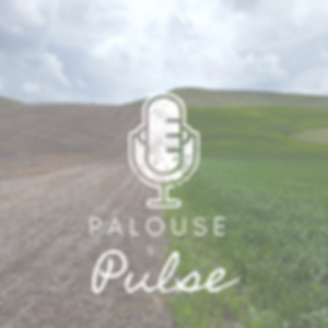 Palouse Pulse.png