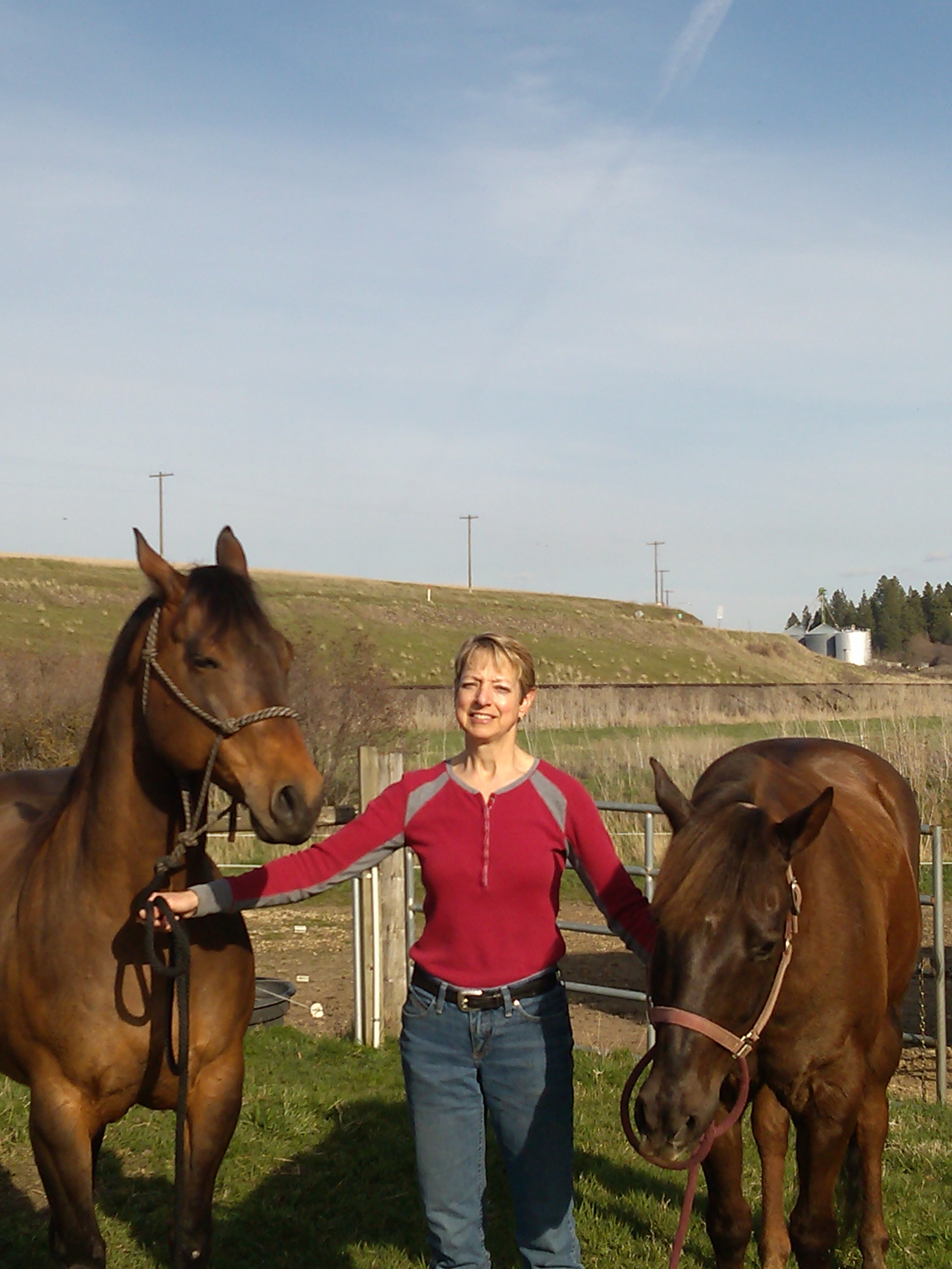 Janet Schmidt operates a horse boarding facility