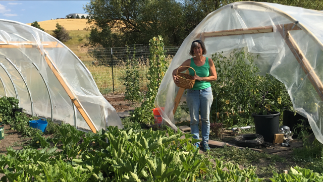Peggy Welsh with hoop houses
