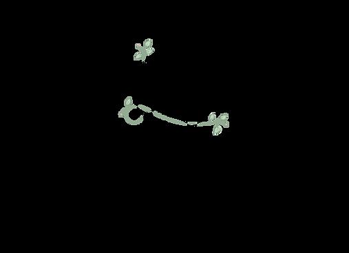Logo Laura.png
