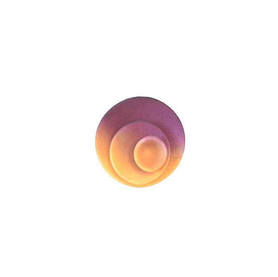 Round ring -Citrus and plum