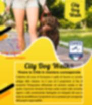 PUBBLICITà_CITY_DOG_WALK.jpg