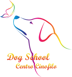 dogschool.png
