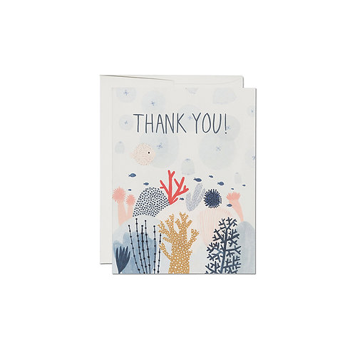 "RED CAP CARDS  ""CORAL REEF THANK YOU"""