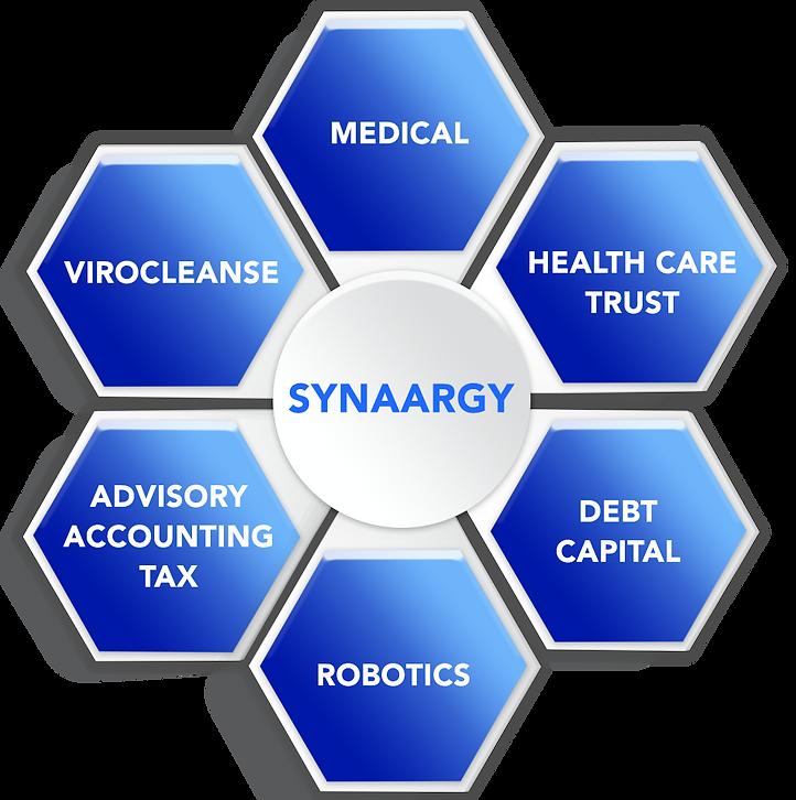 synaargy.png