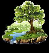 kisspng-natural-resource-conservation-na