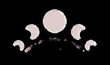 moons%20logo_edited.png