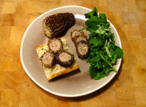 Stuffed morels with turkey and cheese