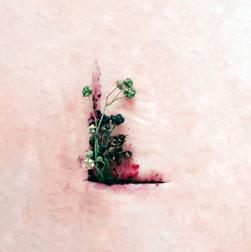 Album design: Luisa Franz Kleopatra