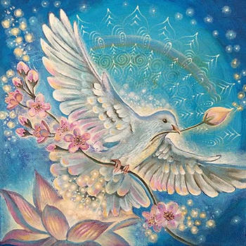 Messenger (Peace Dove)