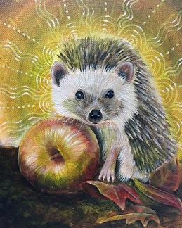 A Hedgehog for Lilli