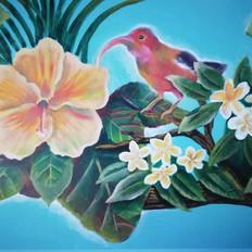 Hawaiian native bird