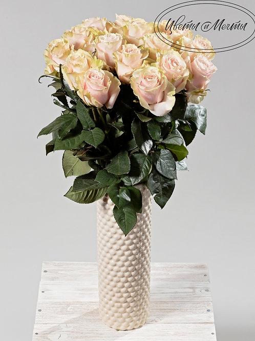 Роза Pink Mondial 70-80см. Эквадор