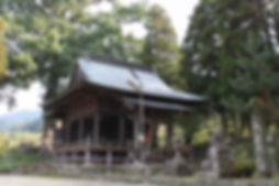 1500年の大楠が見事な 阿蘇神社