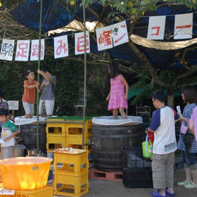 巨峰ワイン祭り