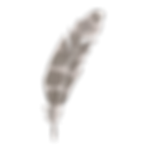 Feather 4