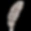plume 4
