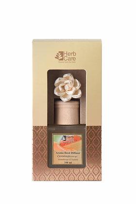 Aroma Reed Diffuser : Cantaloupe